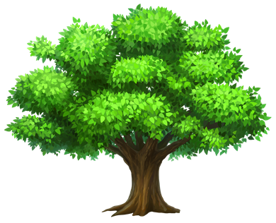 Oak_Tree_PNG_Clipart_Picture